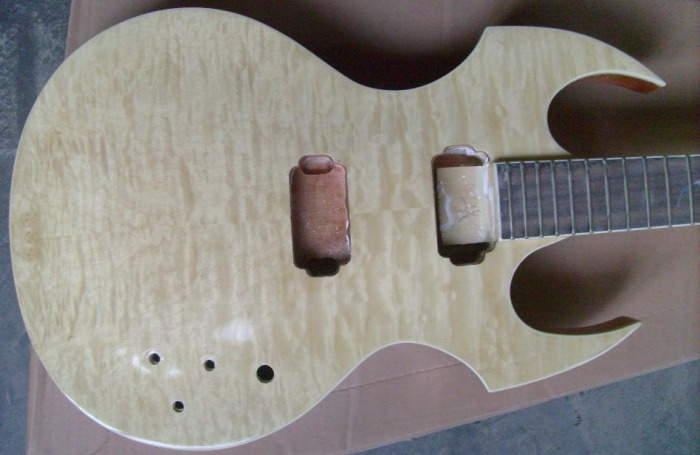 Custom Fireplant Guitars FP-1 Body